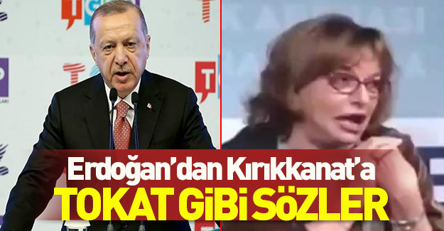 Erdoğan'dan Mine G. Kırıkkanat'a tokat gibi cevap